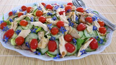 Image : Assiette de restes de poulet en salade