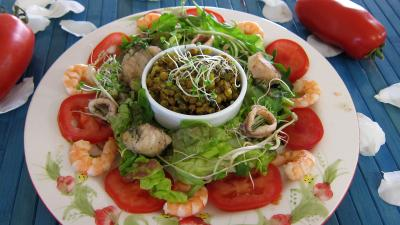 encornet : Assiette de salade tiède de poisson