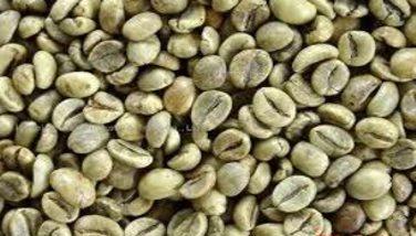 Photo : Café robusta