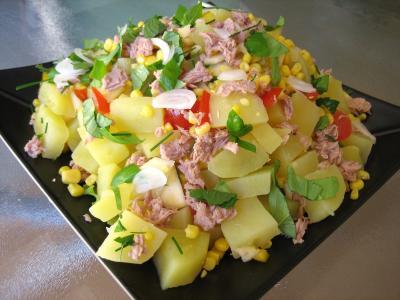 entrée à base de poisson : Assiette de salade de thon et poivrons