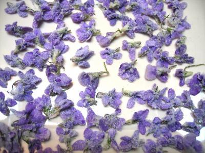 Image : Fleurs cristallisées