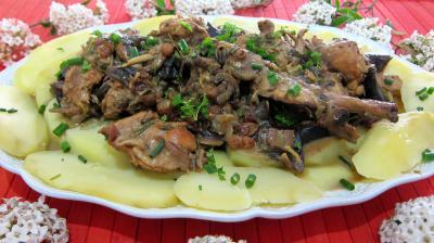 cuisson au vin : Assiette de lapin aux champignons