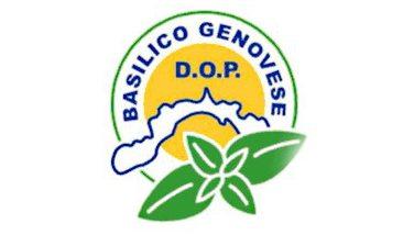 AOP Basilic Genovese