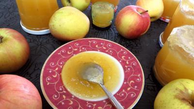 rhubarbe : Coupelle de confiture de pommes à la rhubarbe façon compote