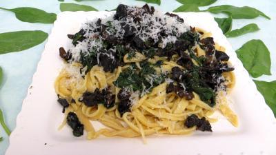 pâtes alimentaires : Assiette de tagliatelles sautées aux épinards