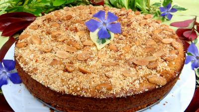 fromage brousse : Cheesecake au brousse