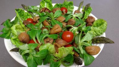 Salade de châtaignes - 7.2