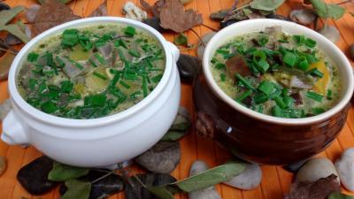 estragon : Soupe de potimarron