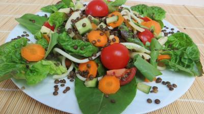 Cuisine diététique : Plat de lentilles en salade
