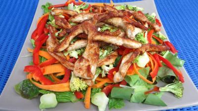pique nique : Plat de blancs de poulet en salade