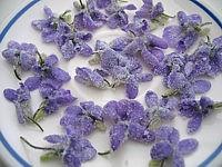 Fleurs cristallisés