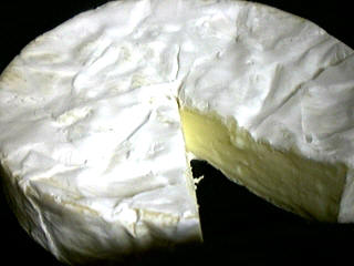 Photo : Fromage coulommier