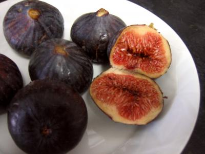 figues violettes