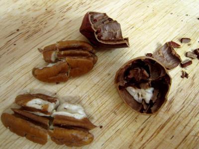 noix de pécan