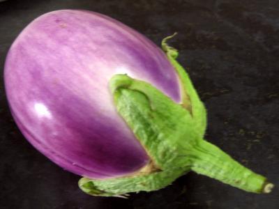 L'aubergine violette