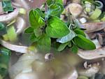 Soupe de champignons et pommes de terre - 6.4