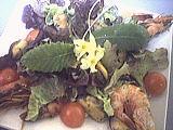 Cuisine diététique : Salade tiède de moules aux primevères