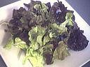 Salade tiède de moules aux primevères - 4.1