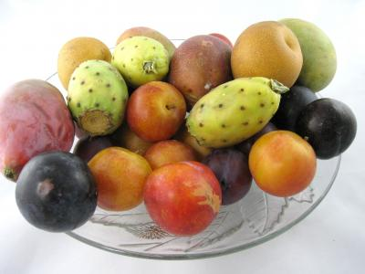 Photo : Assiettes de fruits