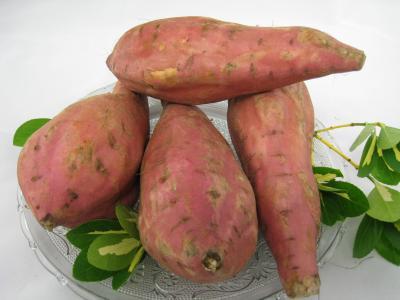 Pomme de terre fiche pomme de terre et recettes de pomme de terre sur supertoinette - Recette patate douce blanche ...