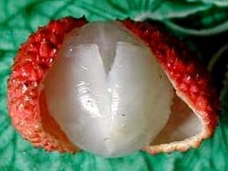 Ananas meringué - 2.3