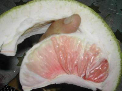 Ecorces de pomélos ou pamplemousses confits - 3.1