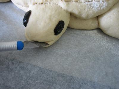 Pain aux oignons en forme de tortue - 15.2